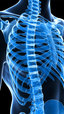 Spine Health & Trunk Stability: Influence of the Thorax & Respiration